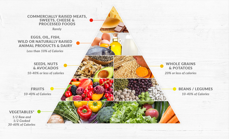 Dr fuhrmans nutritarian pyramid drfuhrman dr fuhrmans nutritarian food pyramid is based on the principles of high nutrient eating as illustrated by his health equation forumfinder Image collections