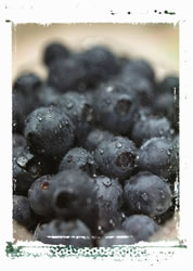 Blueberries Protect Blood Vessels May Slow Age Related Mental Decline Drfuhrman Com