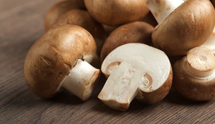 mighty mushrooms boost immune function and guard against cancer